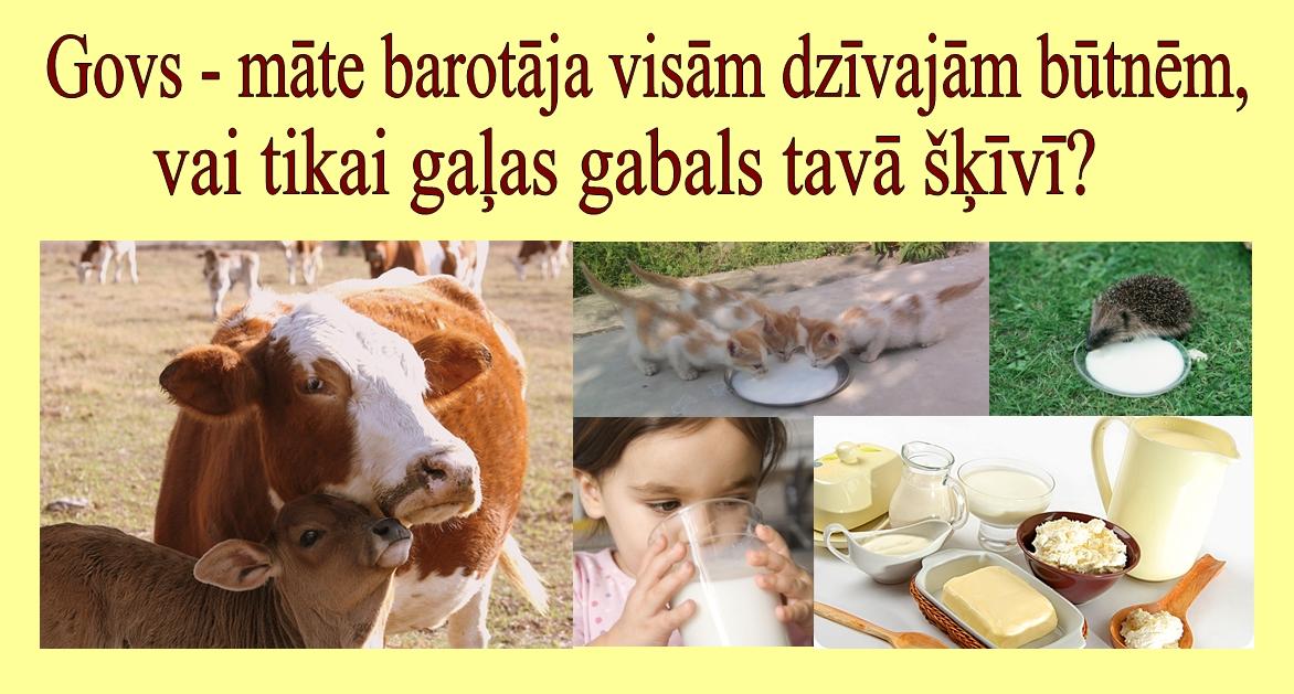 Govs_maate