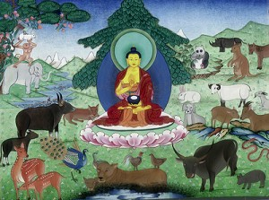 Budisms
